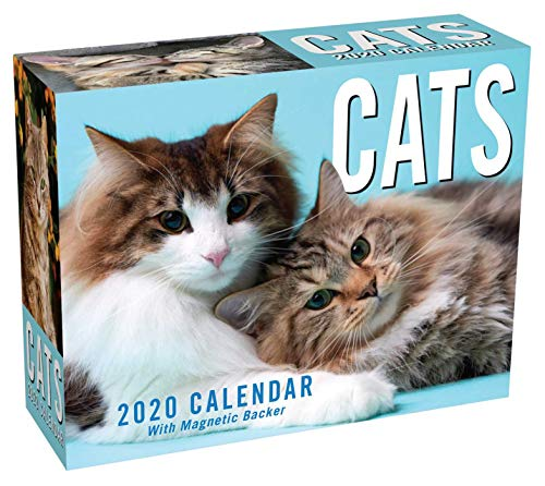 Cats 2020 Mini Day-to-Day Calendar from Andrews McMeel Publishing