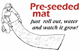 Instant Garden Mat - 3 in 1 - Instant Garden, Roll N Grow - Seeded Mat - Just Roll and Grow in the yard or garden! Grow Flowers Quickly & Easily! 3 mats in one packet!