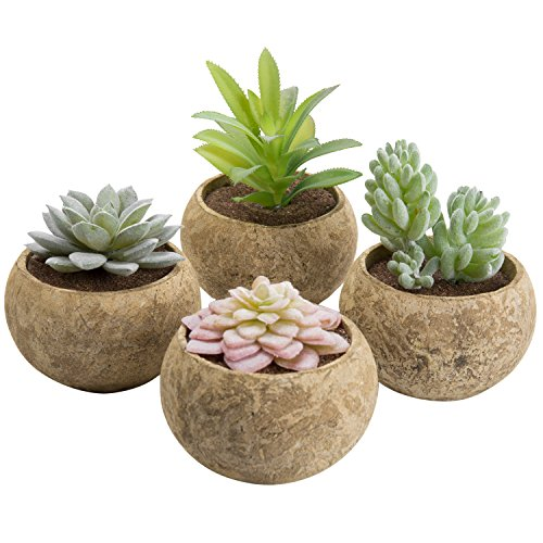 MyGift Miniature Assorted Artificial Succulent Plants in Cement Grey Pots, Set of 4 by MyGift