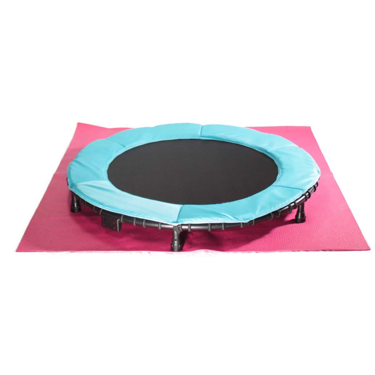 中旺ヘルス ジャンポリン(R) ブルー トランポリン ゴム式 高さ2段階調節可能 低床設計 直径70㎝ ゴムマット付き CH-40B   B079H1C8F3