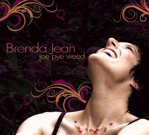 Joe Pye Weed by Brenda Jean (Joe Weed)