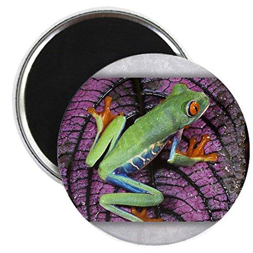 leaf frog fridge - 8