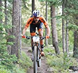 Orange Seal - Regular Formula   16oz Tubeless Bike