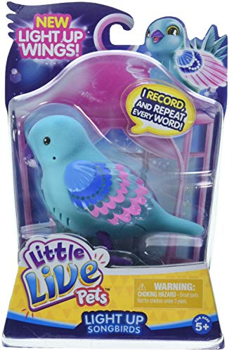 Little Live Pets Season 8 Bird Single Pack - Shelly Shimmer