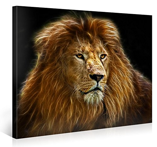 (Large Canvas Print Wall Art - RADIANT LION - 40x30 Inch Animal Canvas Picture Stretched On A Wooden Frame - Giclee Canvas Printing - Hanging Wall Deco Picture / e4166)