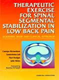 img - for Therapeutic Exercises for Spinal Segmental Stabilization in Low Back Pain: Scientific Basis and Clinical Approach, 1e book / textbook / text book