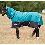 Weatherbeeta Comfitec Premier Free Detach-A-Neck Medium Peacock/Shale 81''