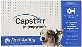 Best Flea Pills - Novartis Capstar Flea Killer 2-25lbs., 6 Tablets Review