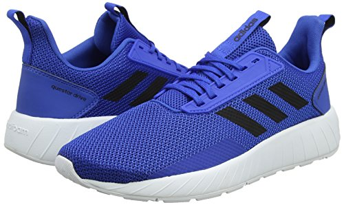 Bleu Adidas Royal Chaussures Hommes bleu Questar De Collegiate Drive Pour Noir Course qxaR0