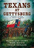 img - for Texans at Gettysburg: Blood and Glory with Hood's Texas Brigade book / textbook / text book