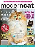 Modern Cat: more info
