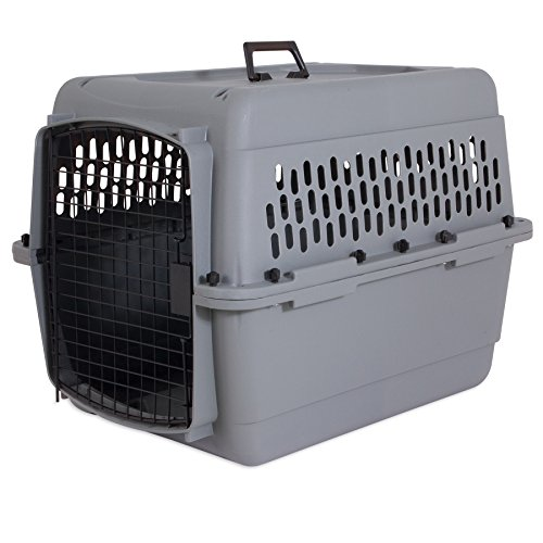 Pet Doskocil Carrier - Aspen Pet Traditional Kennel, 28