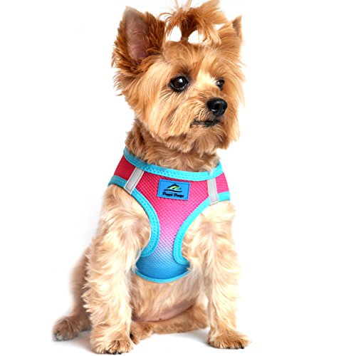 American River Dog Harness Ombre Collection - Sugar Plum (XL)