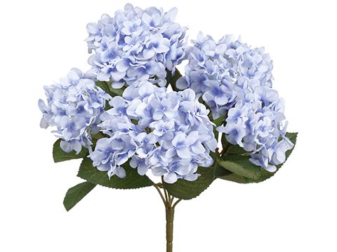 14-Hydrangea-Bush-x5-Delphinium-Blue-pack-of-12