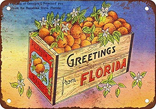 Dozili Greetings from Florida Coffee House or Home Metal Tin Sign ES 12
