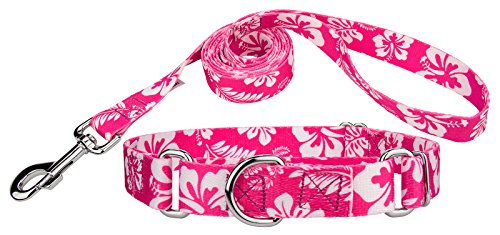 - Country Brook Design - Pink Hawaiian Martingale Dog Collar & Leash - Medium