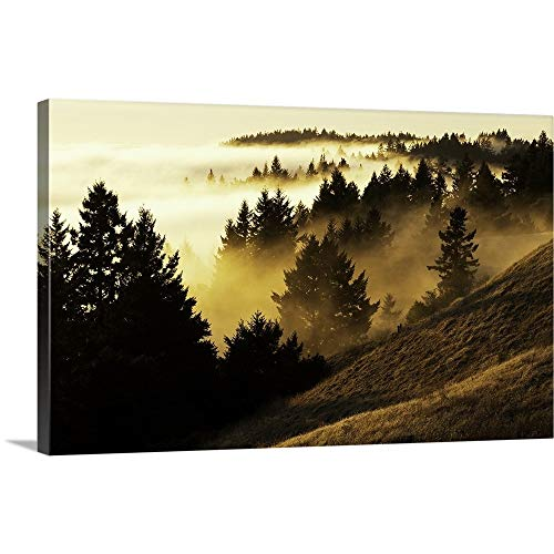 (GREATBIGCANVAS Gallery-Wrapped Canvas Entitled Bolinas Ridge by 72