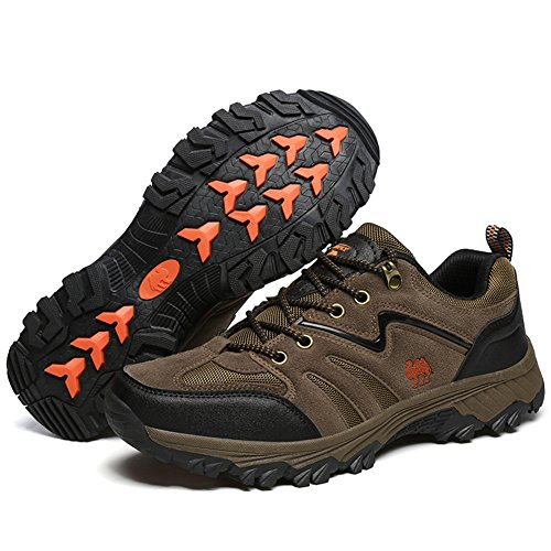 Shoes Course Femme Homme Fitness Baskets Sports Running Chaussures Sneakers Respirantes Orange Torisky De gxwnxW