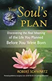 Your Soul's Plan: Discovering the Real Meaning of the Life You Planned Before You Were Born - 51SNgbwjgrL - Your Soul's Plan: Discovering the Real Meaning of the Life You Planned Before You Were Born