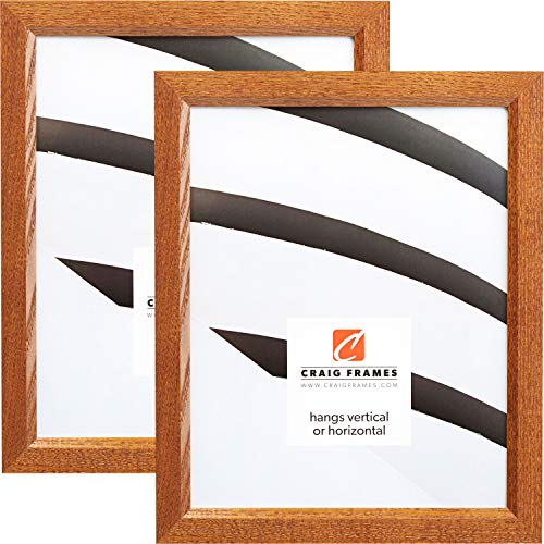 Craig Frames 8261610 5 x 7 Inch Picture Frame, Honey Brown, Set of 2 -