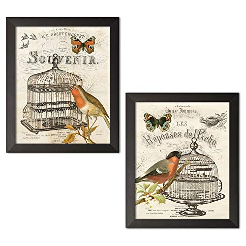 (Gango Home Décor 2 Vintage French Birdcage Art Prints Birds and Butterfly; Two 8x10 in Black Framed Prints, Ready to Hang!)