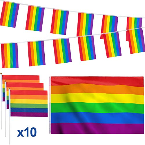 Whaline 12 Pack Rainbow Flag Set, 3x5ft Large Flag, 16.4ft Rainbow Banners Bunting Flags and 10 Pieces Small Hand Flag with Sticks for Carnival Party Parade, Bars, Restaurants, Garden Decoration ()