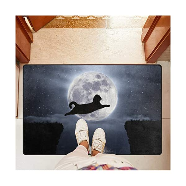 Mr.XZY Cute Cat Moon Interesting Animal Pattern DoormatWelcome Mat Anti-Slip Lock Water Area Rug for Bathroom Front Door Mat Outdoor Indoor Door Mat 31 x 20 in 2010632