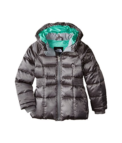 The North Face Kids Girls Ileana Down Parka (Little Big Kids), Metallic Silver MD (10-12