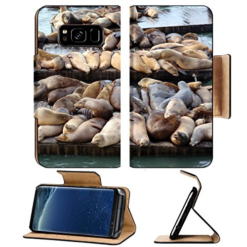 Liili Premium Samsung Galaxy S8 Plus Flip Pu Leather Wallet Case IMAGE ID: 17096492 Large group of Sea Lions rest on rows of Piers near Pier 39 in San Francisco - Pier San California Francisco In 39