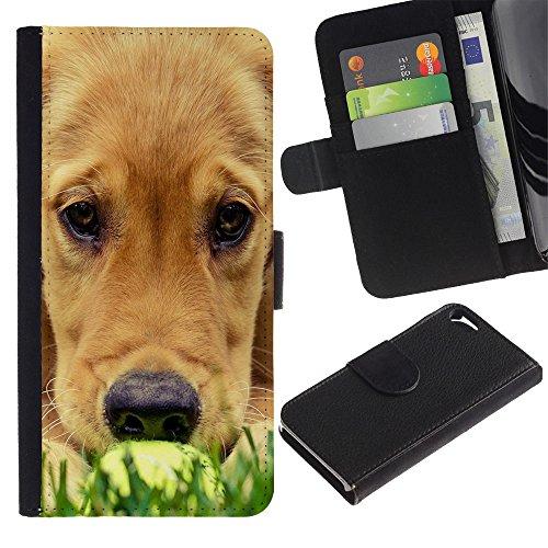 Billetera de Cuero Caso del tirón Titular de la tarjeta Carcasa Funda del zurriago para Apple Iphone 5 / 5S / Business Style Labrador Golden Retriever Muzzle Grass Dog
