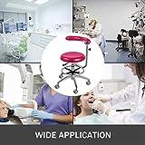 Happybuy Medical Dental Stool Dentist's Chair