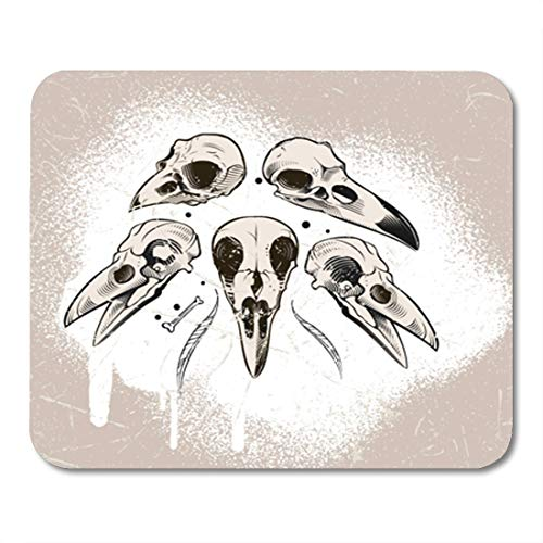 5a5e0c374bf5 Amazon.com : Semtomn Gaming Mouse Pad Cool Racer Smiling Skull with ...