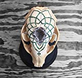Real Raccoon skull with hand carved mandala shaped Arizona Jade, Aventurine, and White Crystal inlay. Ocos Geode in the middle.