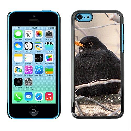 Premio Sottile Slim Cassa Custodia Case Cover Shell // F00016336 Merle // Apple iPhone 5C