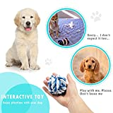 Dog Chew Toys Pet Cotton Rope Toy Set for Small to Medium Dogs - 6PCS