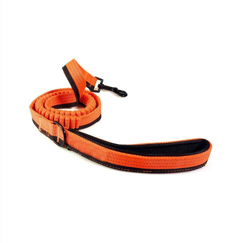 Dog Chain, Dog Leash Pet Chain Nylon Braid Reflective Multifunctional Outdoor Sport Soft Comfortable Durable (orange)