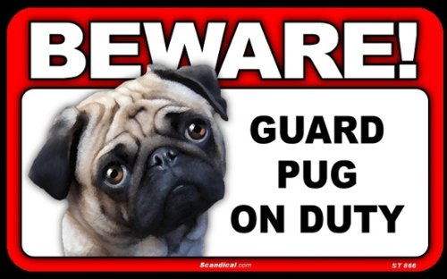 BEWARE Guard Dog on Duty Sign - Pug
