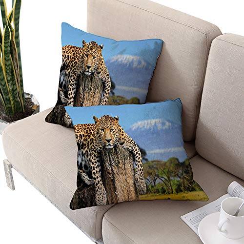 (Africa Square Chaise Lounge Cushion Cover,Leopard Sitting on a Tree Trunk with Mountain Range Journey Up Kilimanjaro Scenery Tan Blue W16 xL16 2pcs Cushion Cases Pillowcases for Sofa Bedroom Car )