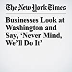 Businesses Look at Washington and Say, 'Never Mind, We'll Do It' | David Gelles