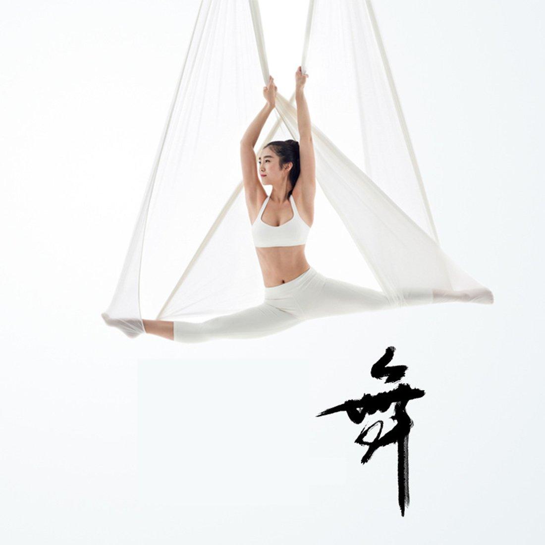 XHL Art Aerial Yoga Schaukel Stoff Stretch Durable Yoga Hängematte Antenne Seide 5 Meter Yoga Hängematte Pilates Dance Ausrüstungen,lila,XL
