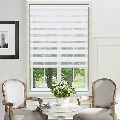 PASSENGER PIGEON Zebra Dual Sheer Water Proof Fabric Window Roller Shades Blinds Control Light,74