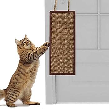Cat Scratching Carpet By Door Carpet Vidalondon