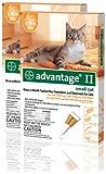 12 MONTH Advantage II Flea Control Medium Cat (for Cats 5-9 lbs.) ORANGE, My Pet Supplies