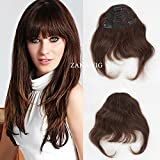 Brazilian Human Hair Clip on Clips in Front Hair Bangs Fringe Extensions Short Straight Virgin Human Hair Hairpeces Extensions for Women(#2 color)