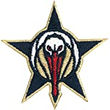 2017 Official NBA New Orleans Pelicans All Star