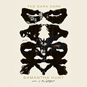 The Dark Dark Audiobook