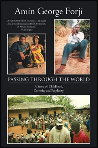 Book Passing Through the World: A Story of Childhood, Curiosity and Perplexity
