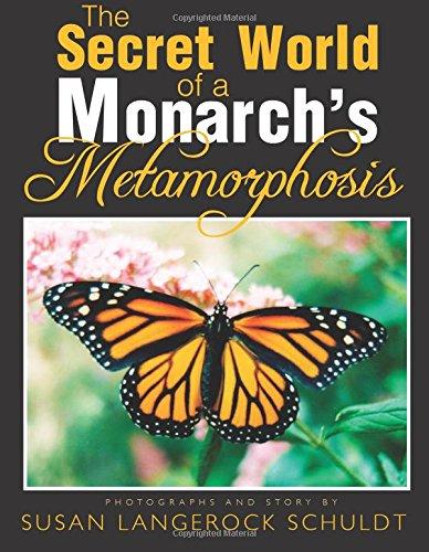 The Secret World of a Monarch's Metamorphosis