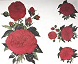 SPESTYLE beautiful and fashionable design extra large 11.02' x 9.06' tattoo sticker for back red roses temporary tattoo sticker