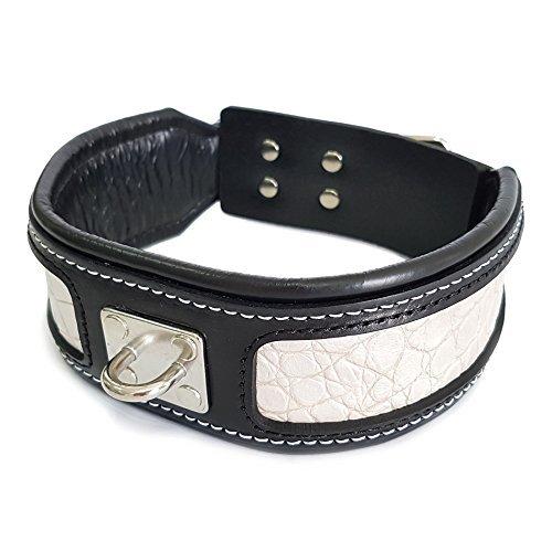 Bestia® Echtleder Reptilien Hundehalsband. 6,3 cm breit. Weich unterlegt. Lederdekoration mit Reptilien Muster. Super widerstandsfähig. M bis XXL. Top Qualität aus Europa!